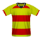 Monarcas Morelia football jersey