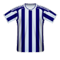 West Bromwich Albion football jersey