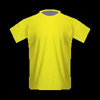 MSK Zilina home football jersey