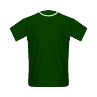 Palmeiras home football jersey