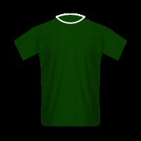 Palmeiras home football jersey