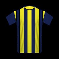 Fenerbahçe SK home football jersey