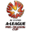 Picture of A-League Pre-Season Challenge Cup