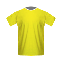 Lithuania football jersey