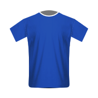 Cardiff City home football jersey