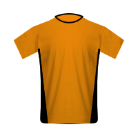 Wolverhampton Wanderers home football jersey