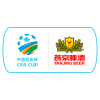 Picture of Chinese FA Cup